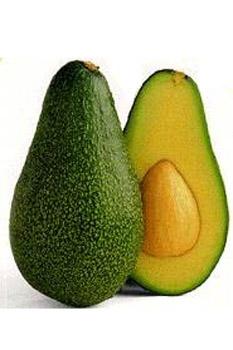 avocado a grundstoffe naturkosmetik heilkr uter und heilpflanzen. Black Bedroom Furniture Sets. Home Design Ideas